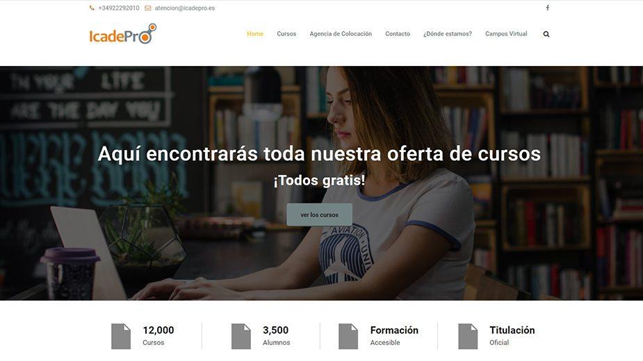 Reparación de la web de Icadepro