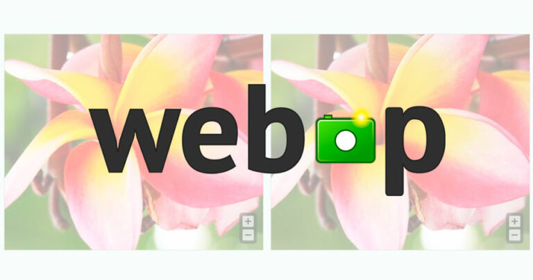 Usar imágenes WebP